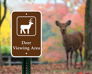 Deer Viewing Area Sign