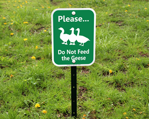 Do not Feed The Geese Animals Sign