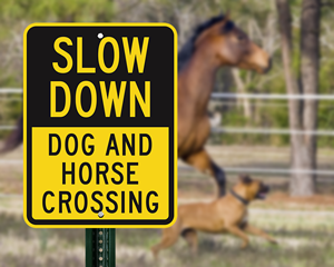 Dog and horse crossing sign