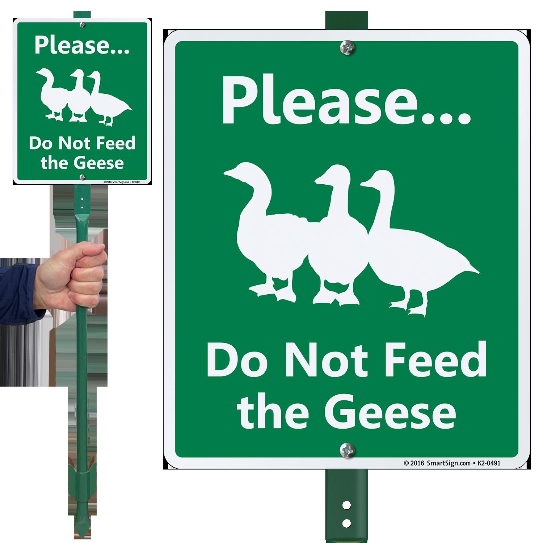 Feed: No Feeding Animals Signs