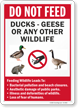 Do Not Feed Ducks Geese Or Any Other Wildlife Sign